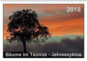 Bäume im Taunus – Jahreszyklus (Wandkalender 2018 DIN A2 quer) von Wolf,  Gerald