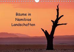 Bäume in Namibias Landschaften (Wandkalender 2018 DIN A4 quer) von Berger,  Anne