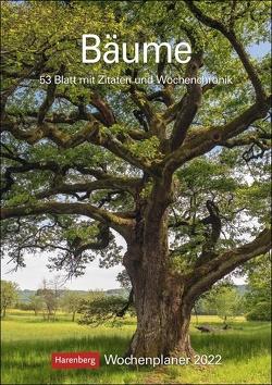 Bäume Kalender 2022 von Harenberg