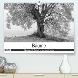 Bäume – Naturschönheiten in schwarz-weiß (Premium, hochwertiger DIN A2 Wandkalender 2020, Kunstdruck in Hochglanz) von Beuck,  Angelika
