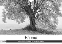Bäume – Naturschönheiten in schwarz-weiß (Wandkalender 2018 DIN A4 quer) von Beuck,  Angelika