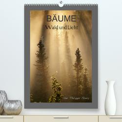 BÄUME (Premium, hochwertiger DIN A2 Wandkalender 2021, Kunstdruck in Hochglanz) von Henry,  Philippe