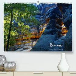 Bäume (Premium, hochwertiger DIN A2 Wandkalender 2020, Kunstdruck in Hochglanz) von Heinemann,  Holger