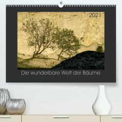 Bäume quer (Premium, hochwertiger DIN A2 Wandkalender 2021, Kunstdruck in Hochglanz) von Bücker,  Michael