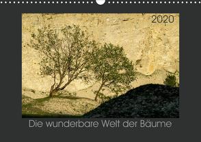 Bäume quer (Wandkalender 2020 DIN A3 quer) von Bücker,  Michael
