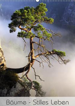 Bäume – Stilles Leben (Wandkalender 2020 DIN A2 hoch) von Behr,  Jana