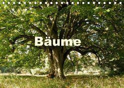 Bäume (Tischkalender 2018 DIN A5 quer) von Schaefer,  Kristine