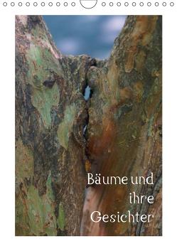 Bäume und ihre Gesichter (Wandkalender 2019 DIN A4 hoch) von Struve,  Andreas