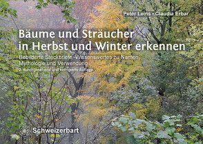 Bäume und Sträucher in Herbst und Winter erkennen von Erbar,  Claudia, Leins,  Peter