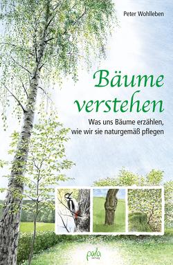 Bäume verstehen von Schneevoigt,  Margret, Wohlleben,  Peter
