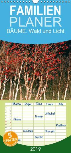 BÄUME. Wald und Licht – Familienplaner hoch (Wandkalender 2019 , 21 cm x 45 cm, hoch) von Henry,  Philippe