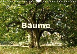 Bäume (Wandkalender 2018 DIN A4 quer) von Schaefer,  Kristine