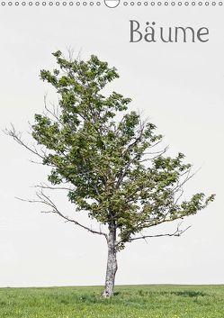 Bäume (Wandkalender 2019 DIN A3 hoch) von von Felbert,  Peter