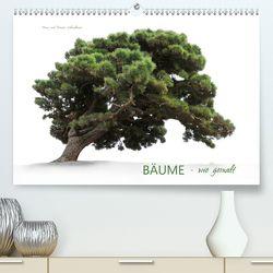 BÄUME – wie gemalt (Premium, hochwertiger DIN A2 Wandkalender 2020, Kunstdruck in Hochglanz) von Schmidbauer,  Heinz