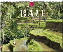 Bali von Zaglitsch,  Hans