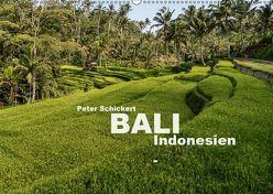 Bali – Indonesien (Wandkalender 2019 DIN A2 quer) von Schickert,  Peter
