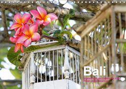 Bali (Wandkalender 2019 DIN A4 quer) von Baumgartner,  Katja