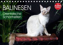 Balinesen – Orientalische Schönheiten (Tischkalender 2019 DIN A5 quer) von Scholze,  Verena