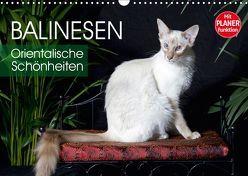 Balinesen – Orientalische Schönheiten (Wandkalender 2019 DIN A3 quer) von Scholze,  Verena