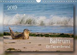 Baltrum – Ein Tag am Strand (Wandkalender 2019 DIN A4 quer) von Heizmann bildkunschd,  Thomas