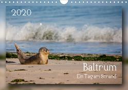 Baltrum – Ein Tag am Strand (Wandkalender 2020 DIN A4 quer) von Heizmann bildkunschd,  Thomas