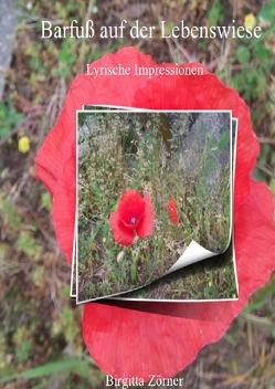 Barfuß auf der Lebenswiese, Hardcover von Zörner,  Birgitta