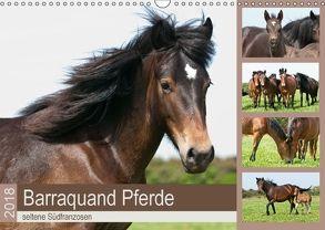 Barraquand Pferde – seltene Südfranzosen (Wandkalender 2018 DIN A3 quer) von Bölts,  Meike