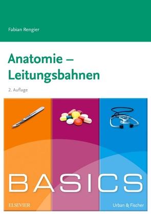 BASICS Anatomie – Leitungsbahnen von Rengier,  Fabian