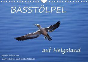 Basstölpel auf Helgoland (Wandkalender 2018 DIN A4 quer) von Schuemann,  Gisela