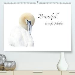 Basstölpel, die weiße Schönheit (Premium, hochwertiger DIN A2 Wandkalender 2020, Kunstdruck in Hochglanz) von Fornal,  Martina