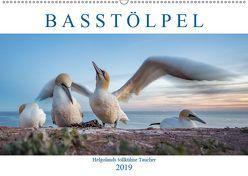 Basstölpel – Helgolands tollkühne Taucher (Wandkalender 2019 DIN A2 quer) von Preißler,  Norman
