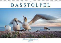Basstölpel – Helgolands tollkühne Taucher (Wandkalender 2019 DIN A3 quer) von Preißler,  Norman