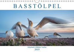 Basstölpel – Helgolands tollkühne Taucher (Wandkalender 2019 DIN A4 quer) von Preißler,  Norman