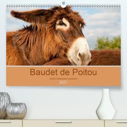 Baudet de Poitou – Seltene französische Langohren (Premium, hochwertiger DIN A2 Wandkalender 2021, Kunstdruck in Hochglanz) von Bölts,  Meike