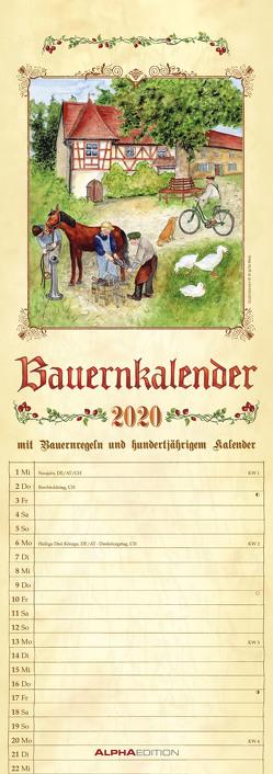 Bauernkalender 2020 – Streifenkalender (15 x 42) – mit 100-jährigem Kalender und Bauernregeln – Streifenplaner – Wandplaner – Küchenkalender von ALPHA EDITION