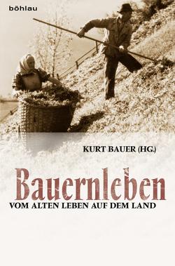 Bauernleben von Bauer,  Kurt