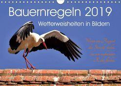 Bauernregeln 2019. Wetterweisheiten in Bildern (Wandkalender 2019 DIN A4 quer) von Lehmann,  Steffani