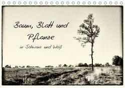 Baum, Blatt und Pflanze in Schwarz und Weiß (Tischkalender 2018 DIN A5 quer) von Schnell,  Michael