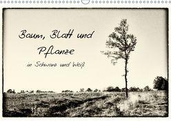 Baum, Blatt und Pflanze in Schwarz und Weiß (Wandkalender 2018 DIN A3 quer) von Schnell,  Michael