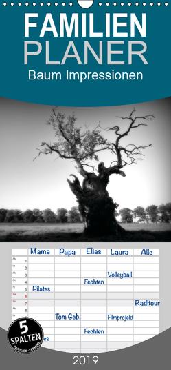 Baum Impressionen – Familienplaner hoch (Wandkalender 2019 , 21 cm x 45 cm, hoch) von Heinemann,  Holger
