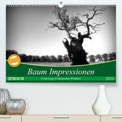 Baum Impressionen (Premium, hochwertiger DIN A2 Wandkalender 2020, Kunstdruck in Hochglanz) von Heinemann,  Holger