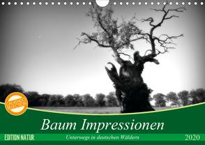 Baum Impressionen (Wandkalender 2020 DIN A4 quer) von Heinemann,  Holger