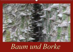 Baum und Borke (Wandkalender 2018 DIN A2 quer) von Schneider,  Bettina