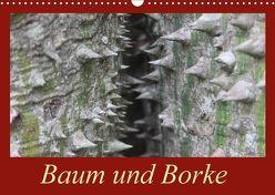 Baum und Borke (Wandkalender 2018 DIN A3 quer) von Schneider,  Bettina