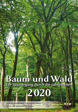 Baum und Wald 2020