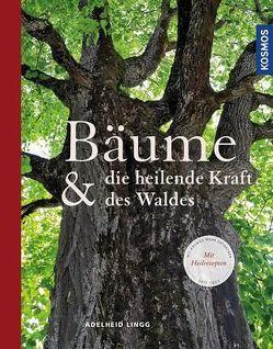 Bäume & die heilende Kraft des Waldes von Lingg,  Adelheid