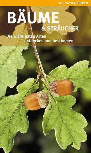 Bäume & Sträucher von Hofmann,  Helga