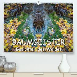 Baumgeister, Gesichter des Waldes (Premium, hochwertiger DIN A2 Wandkalender 2020, Kunstdruck in Hochglanz) von Döring,  Jürgen