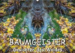 Baumgeister, Gesichter des Waldes (Wandkalender 2018 DIN A2 quer) von Döring,  Jürgen