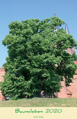 Baumleben 2020 von Peter,  Klug